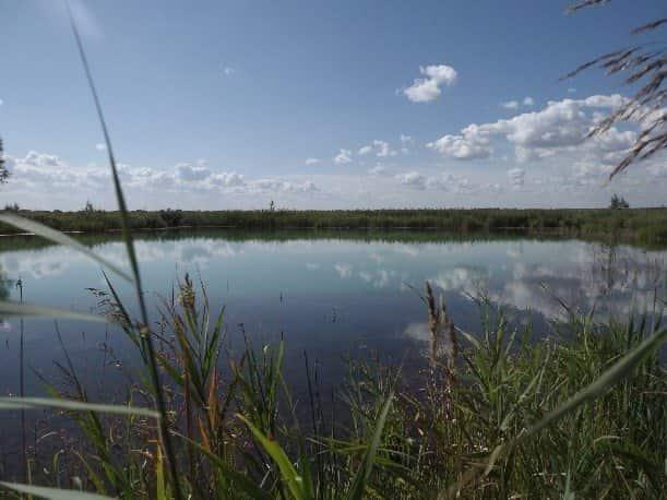 Бездонное озеро (Тульская область)