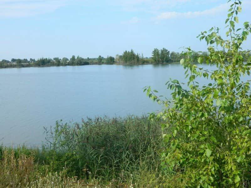 Шачебольское озеро