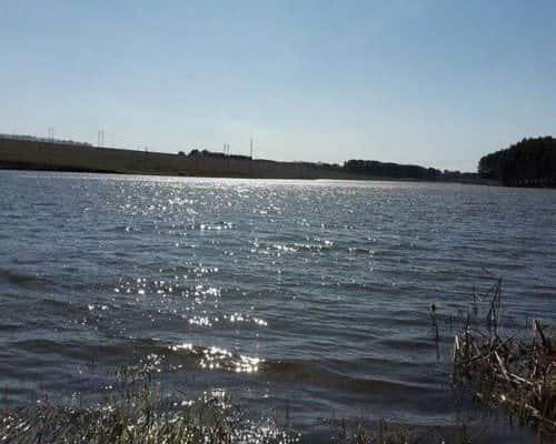 Пруд Три пескаря (Орловская область)
