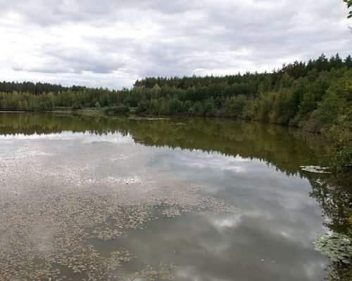 Озеро Лезвино
