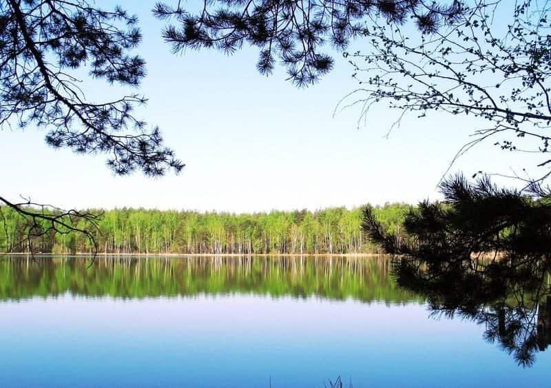 Святое озеро (Брянская область)