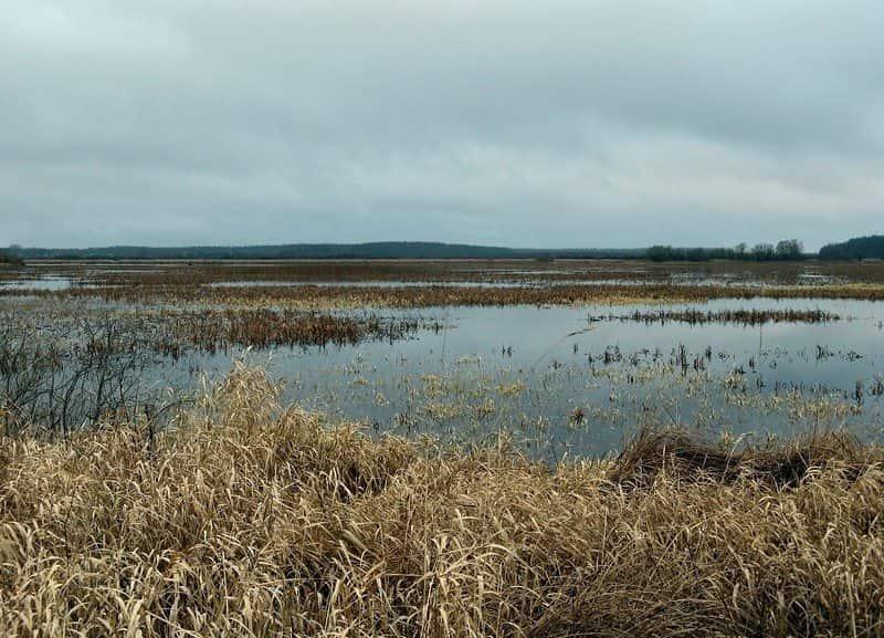 Иванковское озеро