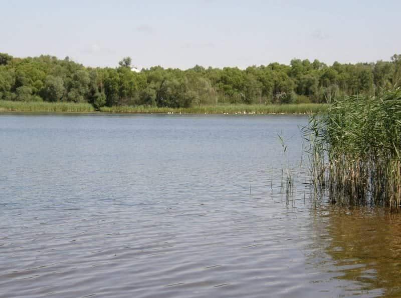 Железногорское водохранилище