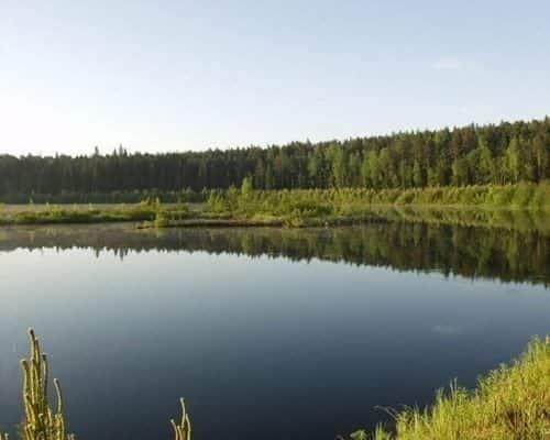 Дубовое озеро