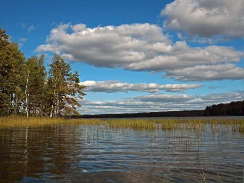 Великое озеро (Владимирская область)
