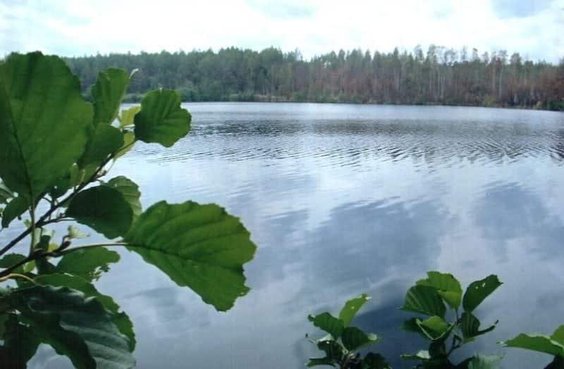 Озеро Большие Рассохи