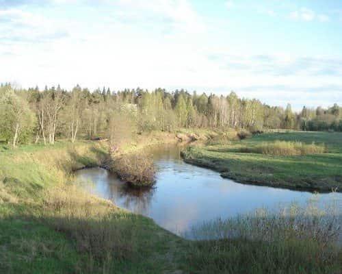 Межа (Костромская область)