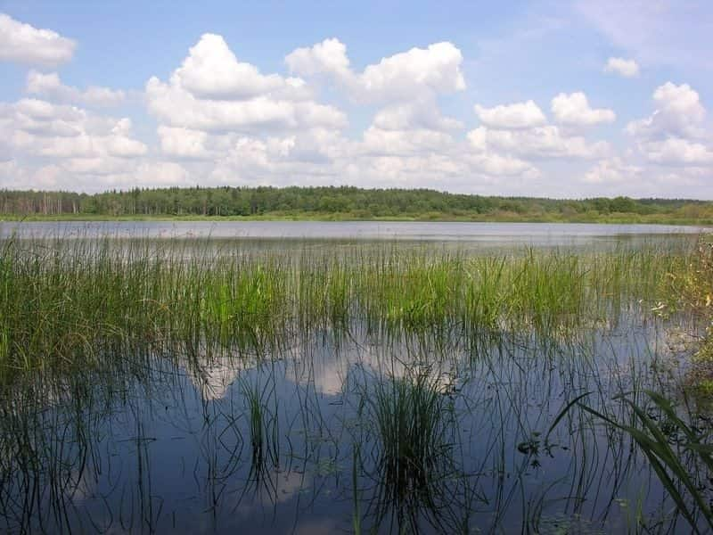 Бечино озеро