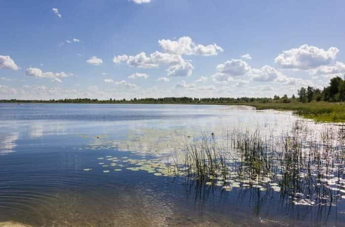 Кудринское озеро