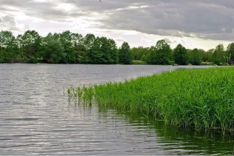 Щёкинское водохранилище