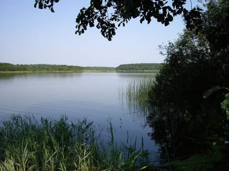 Бездонное озеро (Брянская область)