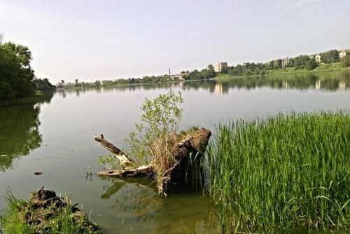 Тамбовское водохранилище