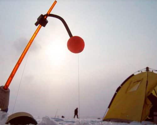 Леска для зимней рыбалки: виды и особенности