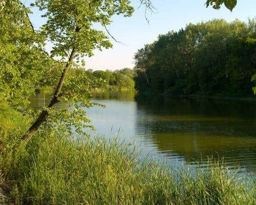 Озеро Куркино (Бобровое)