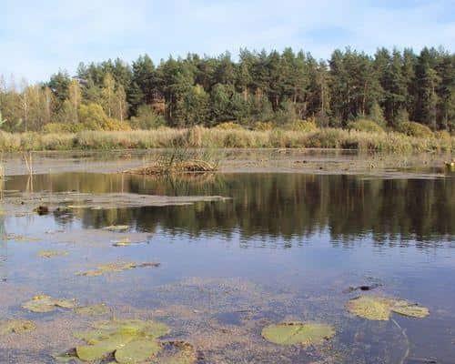 Озеро Богородицкое