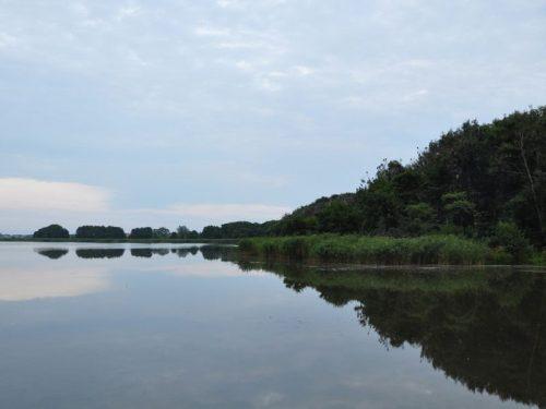 Чайка озеро