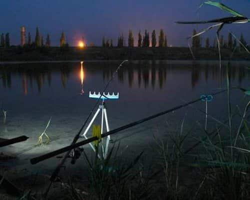 Ночная ловля фидером