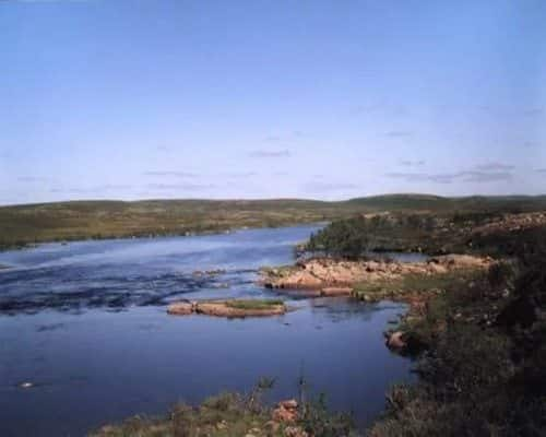 Харловка