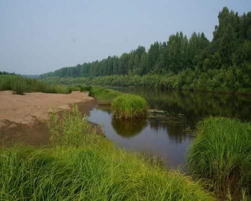 Кобра (Кировская область и Республика Коми)