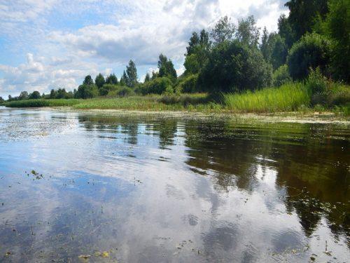 kostromskoe