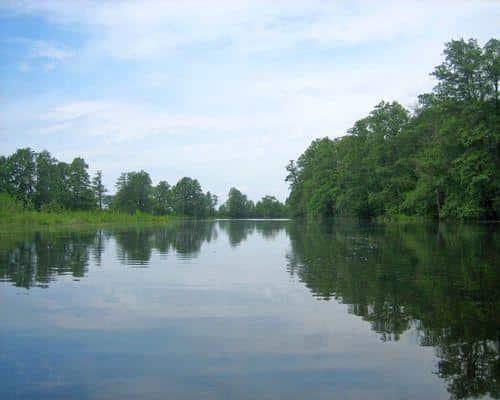 Озеро Кривецкая Старица