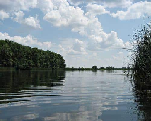 Лебяжье озеро (Липецкая область)