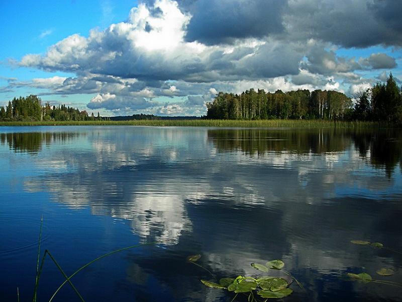 неладное, озеро лучанское фото сети показали