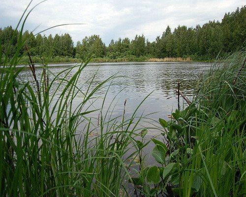 Никулятское озеро