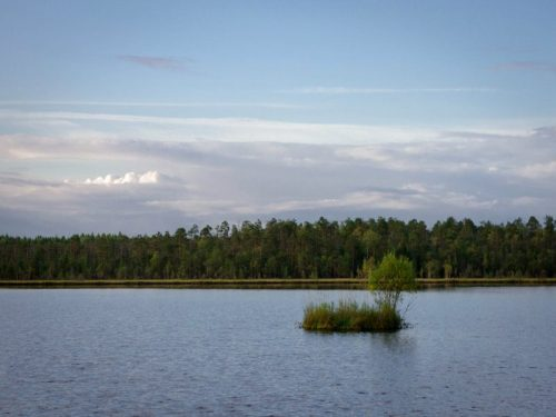 orlovskoe