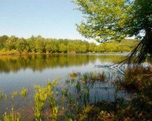 Ловля поплавочной удочкой на сильном течении