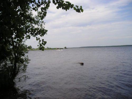 Шекснинское водохранилище