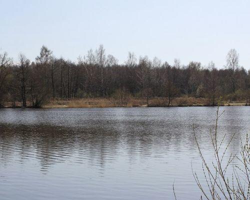 Свалка озеро