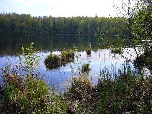 svyatovskoe