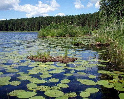 Торсуновское озеро