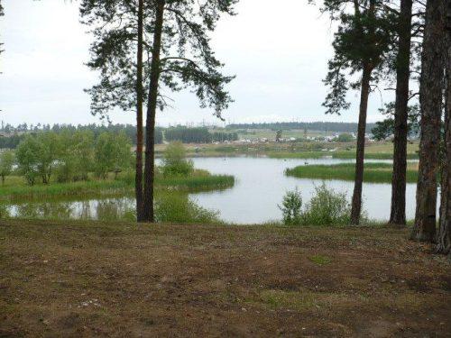Васильевские озёра