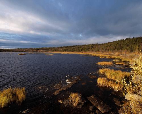 Верхнетуломское водохранилище