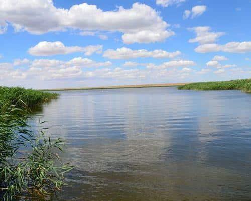 Большая Чада озеро