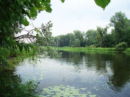 Большое Орлово озеро