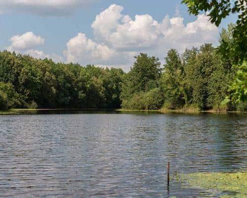 Боровое озеро (Пензенская область)