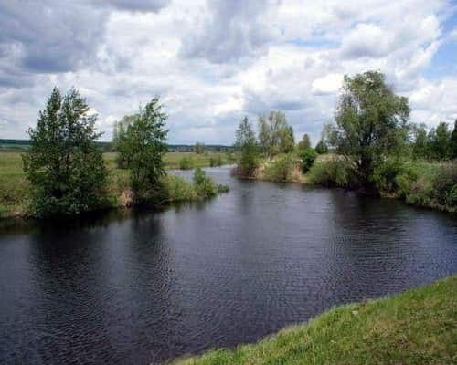 Буй (Пермский край, Башкортостан, Удмуртия)
