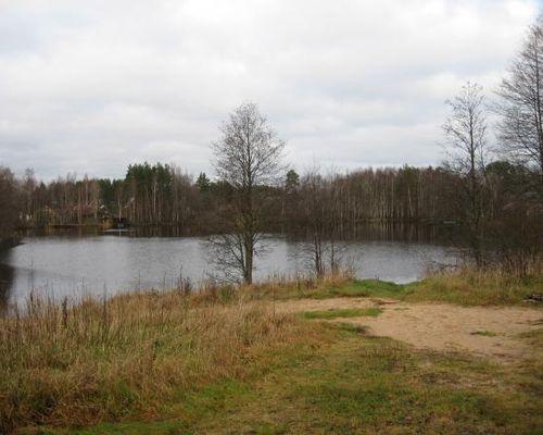 Чёрное озеро (Пензенская область)