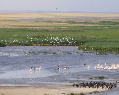 Озеро Деед-Хулсун