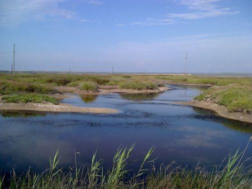 Джарылгач озеро