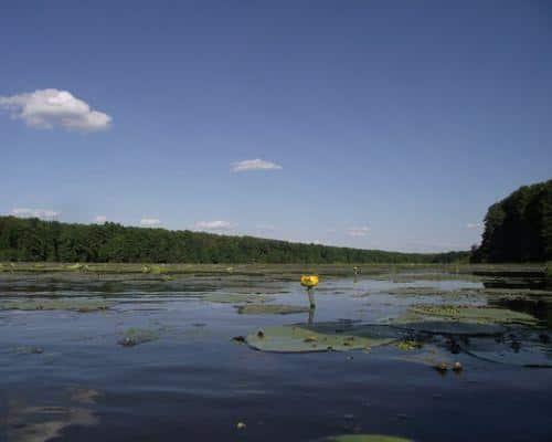 Инорка озеро