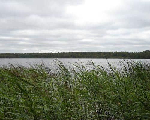 Когояр-озеро