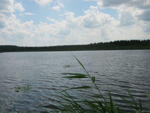 Крячек озеро