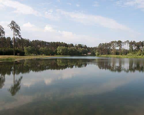 Лебяжье озеро (Саратовская область)