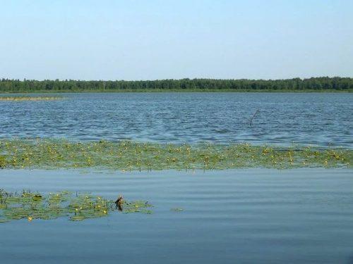 Минзелинское озеро