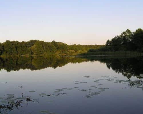 Пичарки озеро