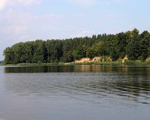 Правдинское водохранилище (Алтайский край)